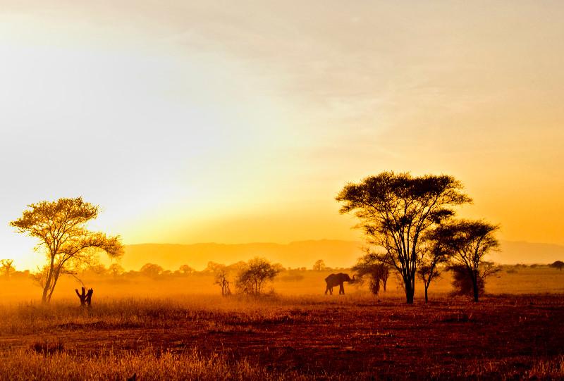 large_Sunset_3.jpg