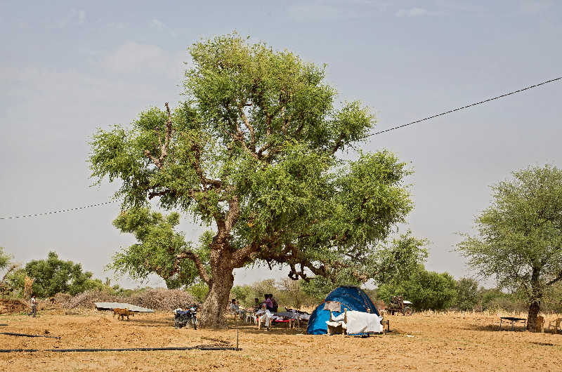 large_Tent_1.jpg