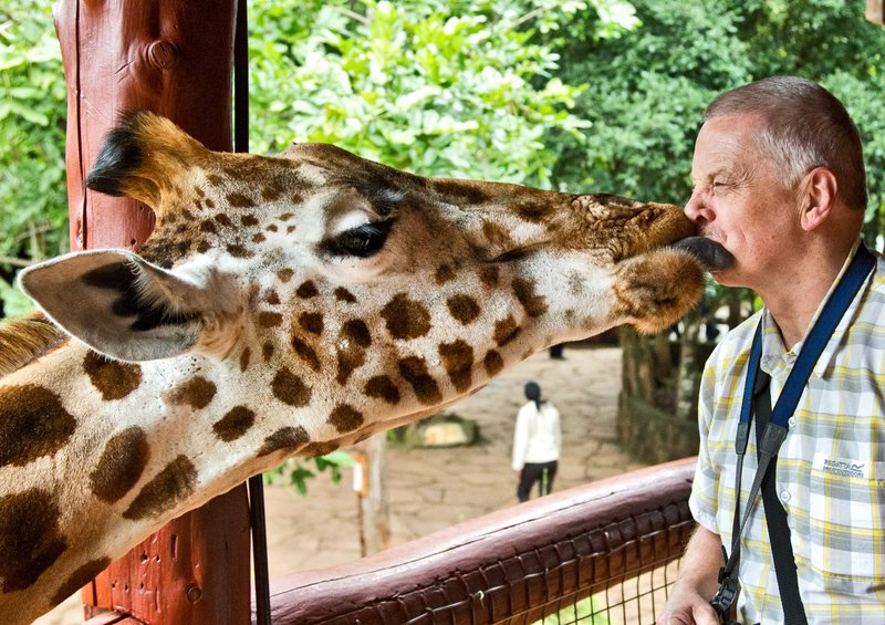 large_The_Giraffe_Centre_25.jpg