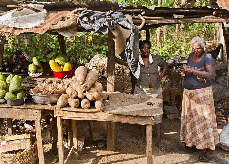 large_The_Journey_to_Jacmel_21.jpg