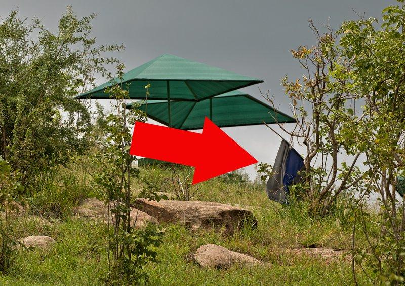 large_Tse_Tse_Flag.jpg