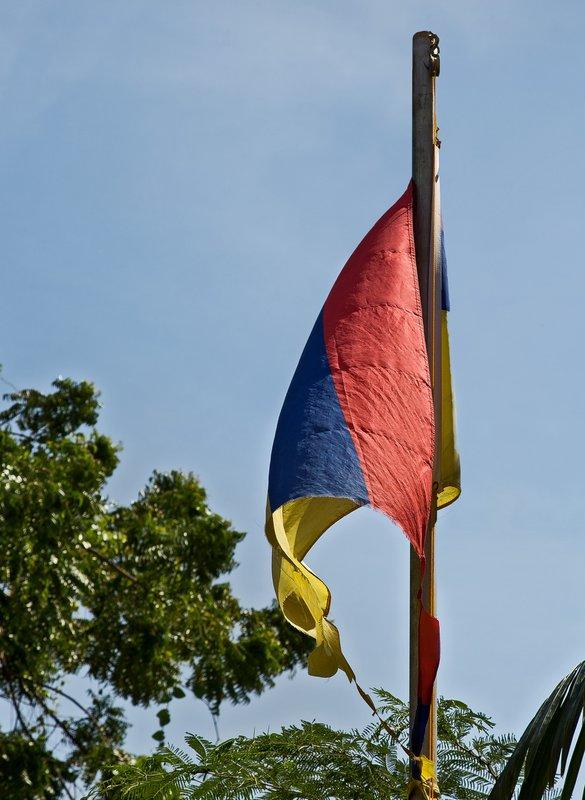 large_Venezuealan_Flag_2.jpg