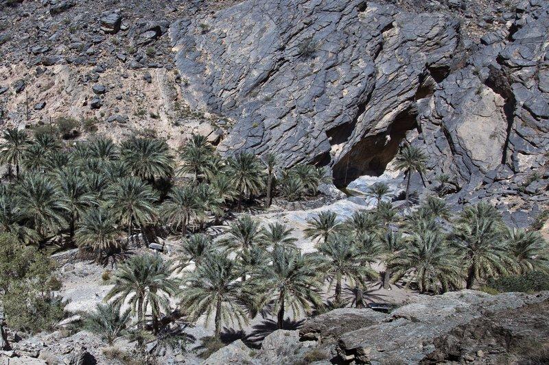 large_Wadi_Bani_Awf_31.jpg