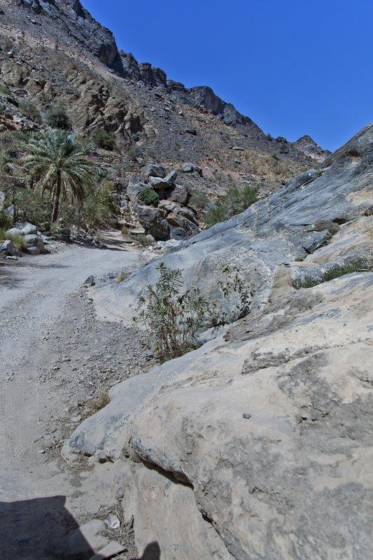 large_Wadi_Bani_Awf_33.jpg