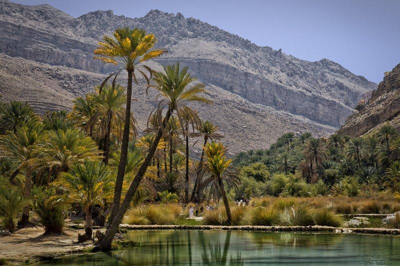 large_Wadi_Bani_Khalid_17.jpg