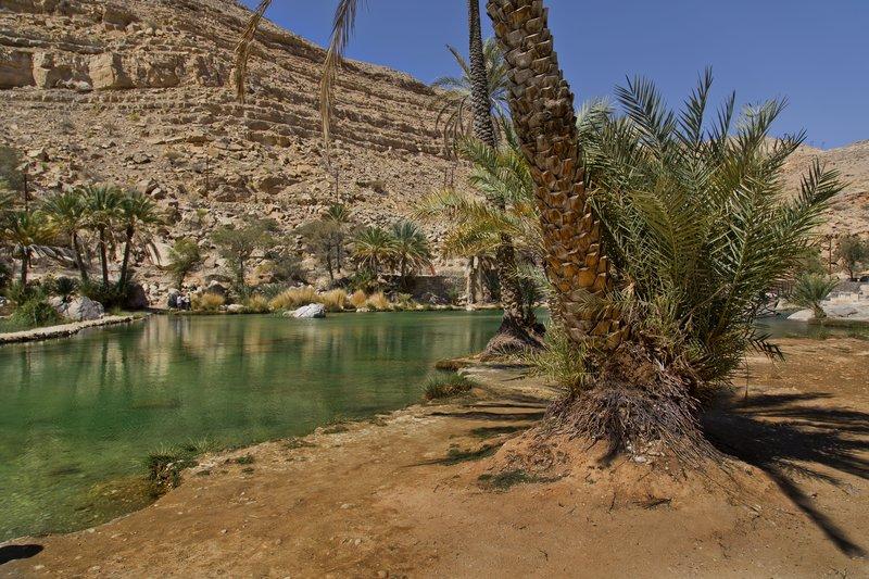 large_Wadi_Bani_Khalid_9.jpg