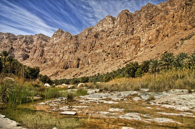 large_Wadi_Tiwi_1.jpg