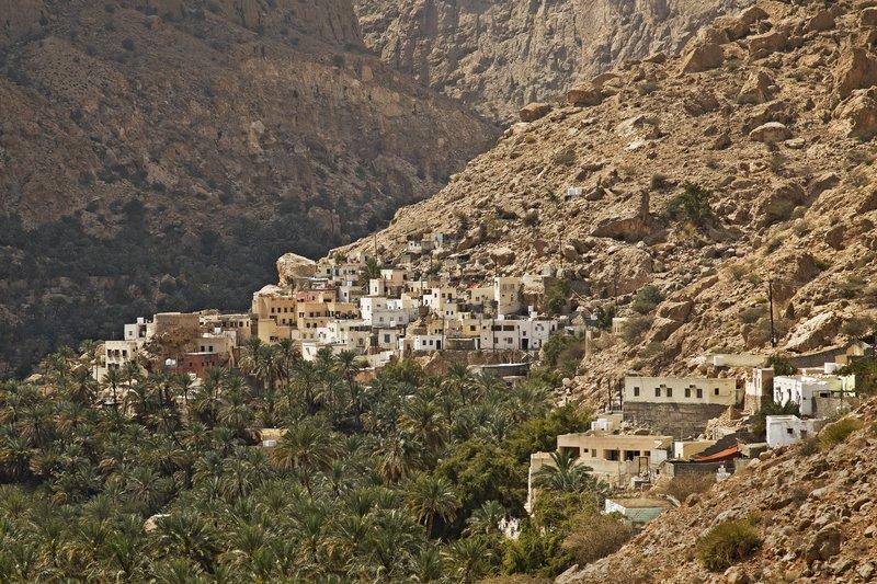 large_Wadi_Tiwi_15.jpg