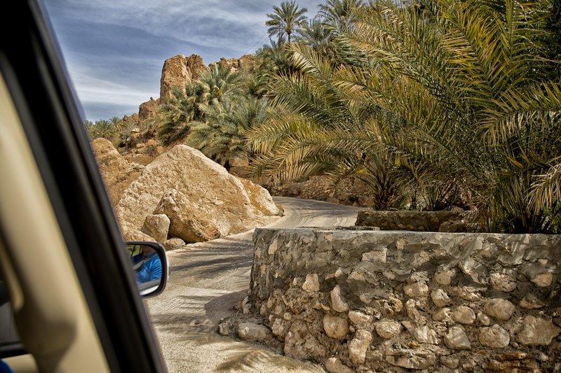 large_Wadi_Tiwi_28.jpg