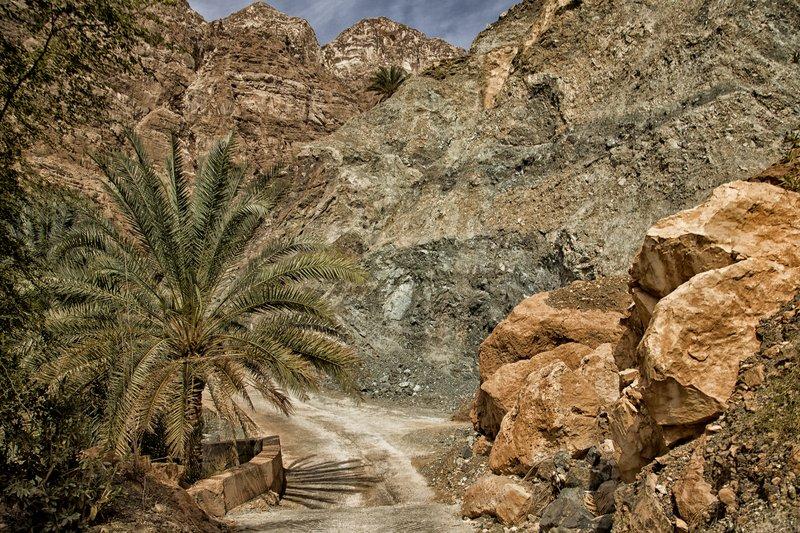 large_Wadi_Tiwi_32.jpg