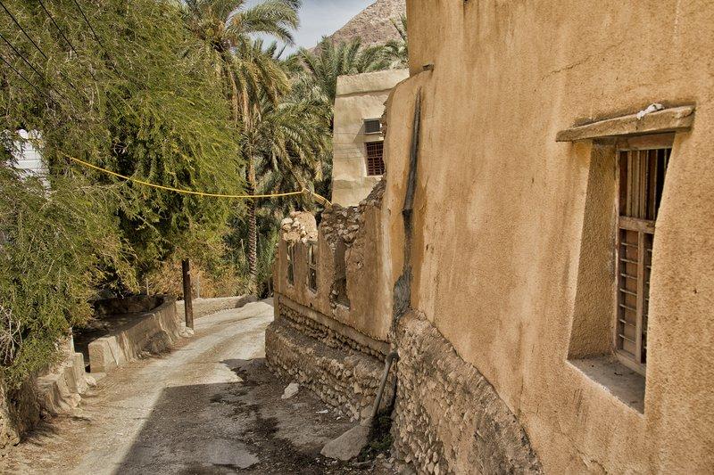 large_Wadi_Tiwi_35.jpg