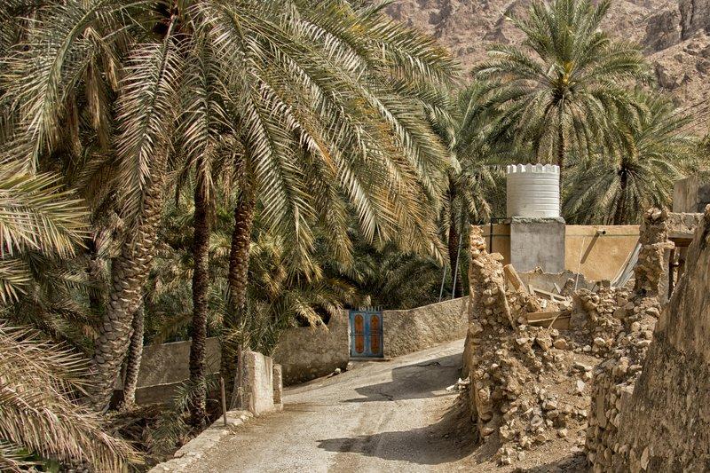large_Wadi_Tiwi_36.jpg