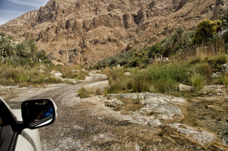 large_Wadi_Tiwi_37.jpg