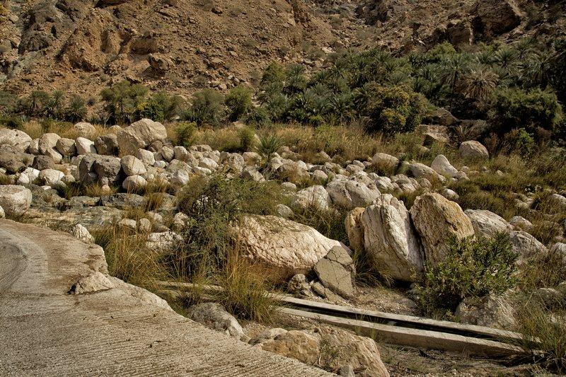 large_Wadi_Tiwi_38.jpg