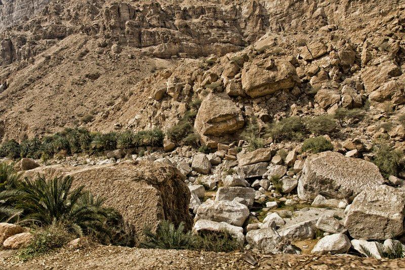 large_Wadi_Tiwi_6.jpg