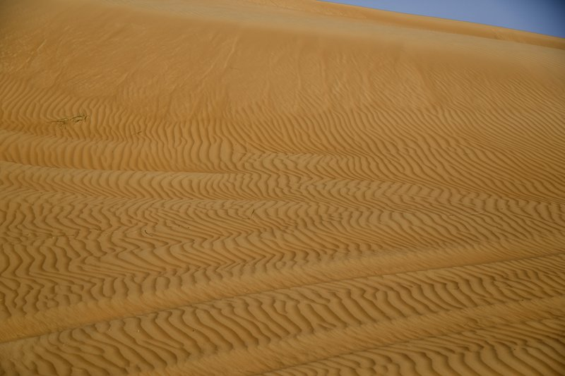 large_Wahiba_Sands_7.jpg