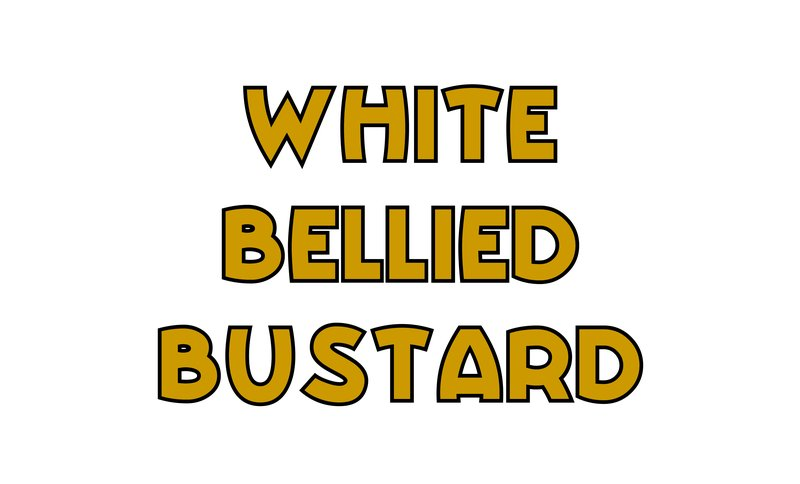 large_White_Bellied_Bustard.jpg