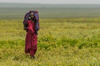 Maasai Woman near Serengeti Gate, Ngorongoro Conservation Area 1