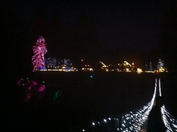 Capilano Suspension Bridge with christmas lights