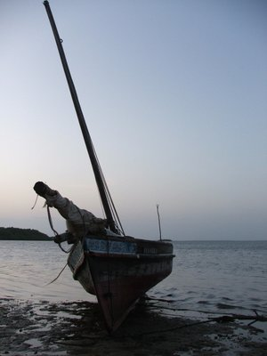 The mighty Dhow