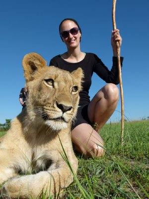 Lion walk, Me with 12 month old lioness