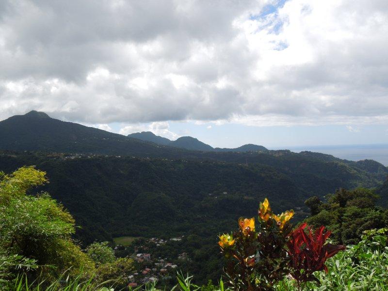 Dominica 104