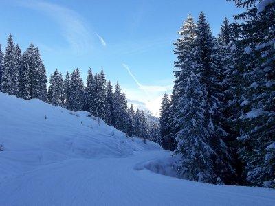 AU_Bad Gastein in winter