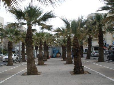 ISR_Tel Aviv - Nordau