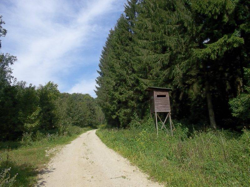 AU_NÖ_Hunting Tower