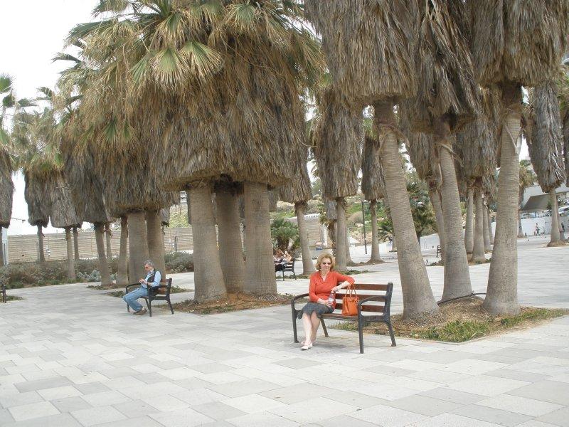 ISR_Tel Aviv - Gordon