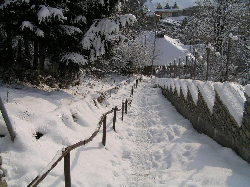 ROMANIA (Sinaia) snowy ledder