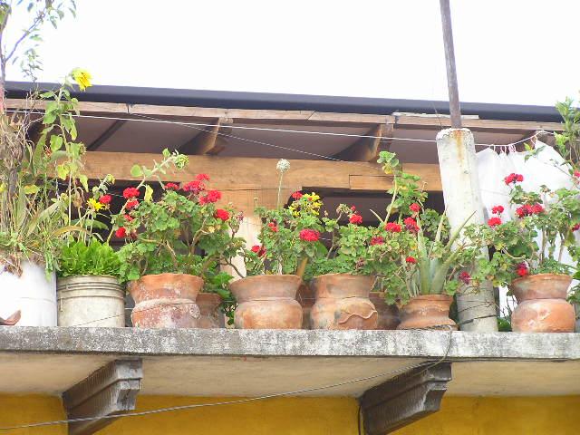 GUATEMALA - Antigua - balcony
