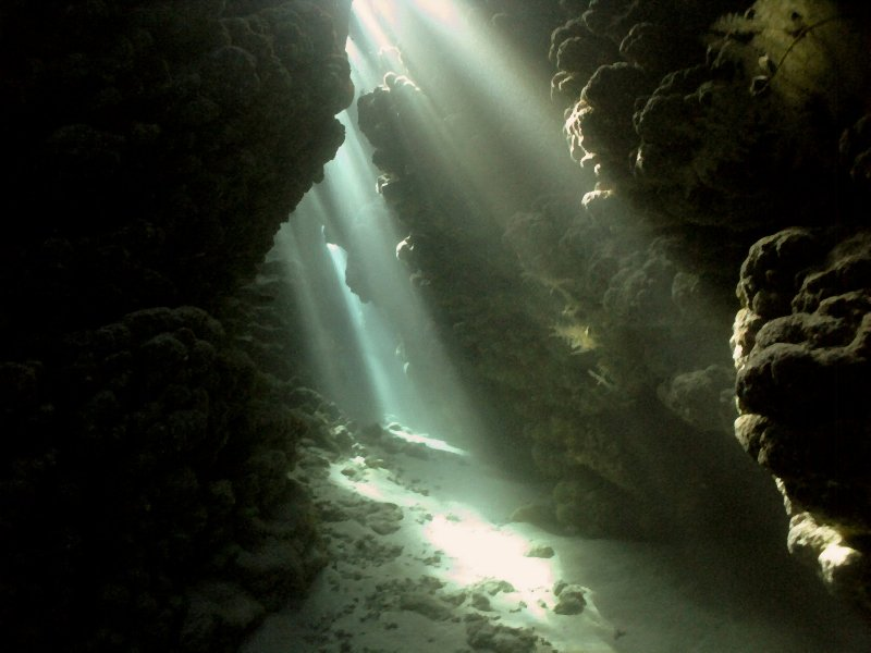 UNDERWATER_JackFish Alley Cave (Ras Mohamed National Marine Reserve, Red Sea, Egypt)