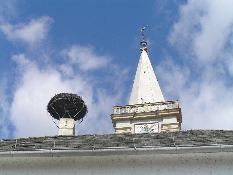 AUSTRIA_Rust - stork nest