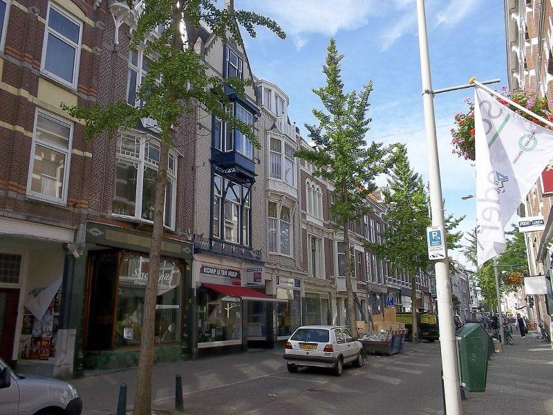 NL_street in Den Haag