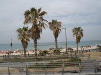 ISR_Tel Aviv - coming to sea