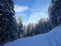 AU_Bad Gastein sky & snow