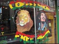 NL_Amsterdam - coffee shop Free Adam