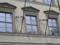 GERMANY_Munich - doves on Neuhauserstrasse