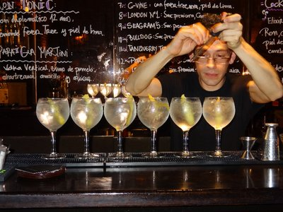 Bar Cockteleria Gin & Tonics