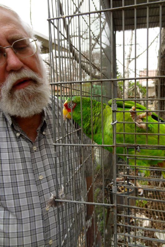 Nissan and one of his parrots