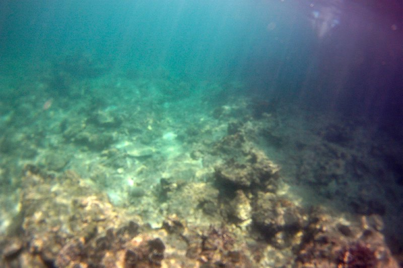 Snorkeling in Wanglong Bay
