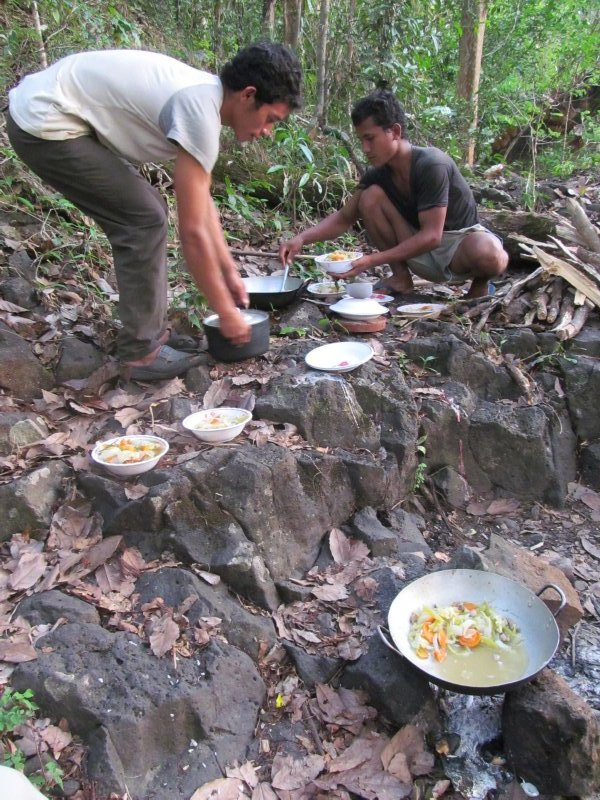 Dinner in the Jungle