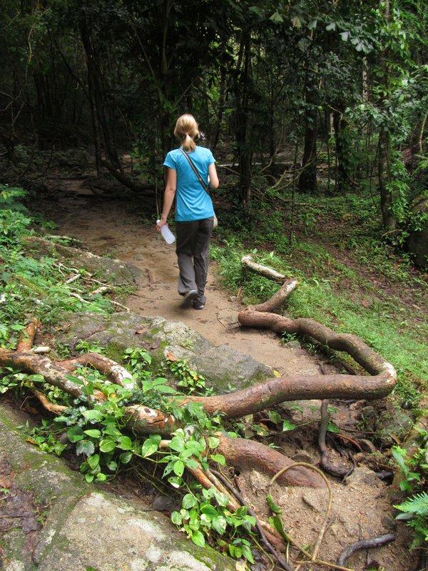 Hike to the Domsila Viewpoint, Koh Phangan