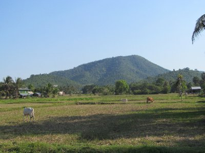 Countryside outside of Kampot 4