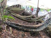 Hammocks at jungle camp