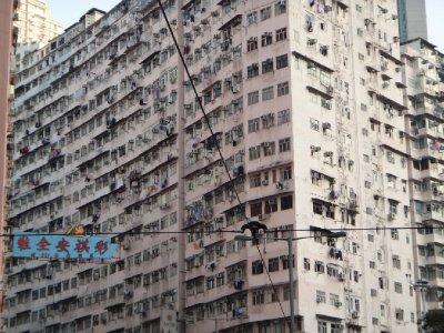 HK_sony_architecture3.jpg