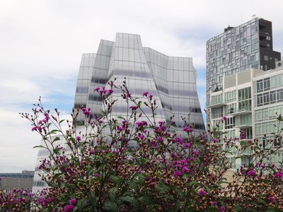 NYC_Sony_Highline5.jpg