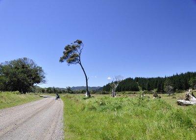 Bike on the Coromandel dirt road
