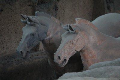 Terracotta..ors_041.jpg